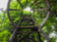 flora-green-iron-106788.jpg