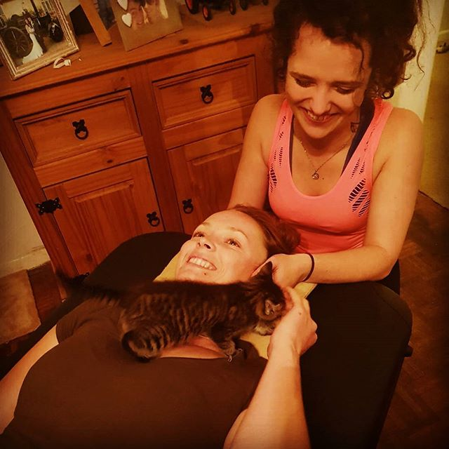Anna's chiropractic session at her home was sabotaged by her very cute kitten!! 😁❤ _a_n_equestrian_