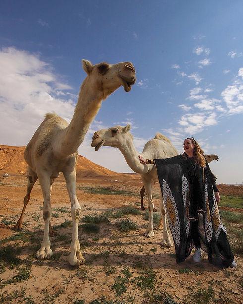 Saudi camel.JPG