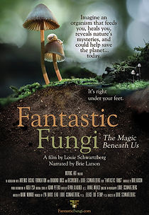 FilmPoster47-FantasticFungi.jpg