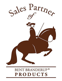 Logo_SalesPartner-breiter5a92ba61d4aa7.j
