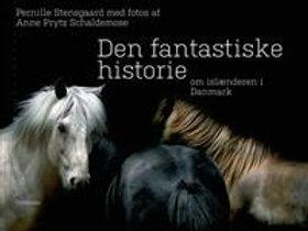 Den Fantastiske Historien om Islænderen i Danmark