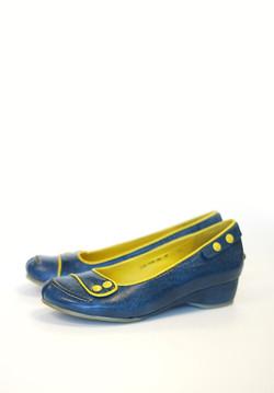 Fancy Blue Shoes