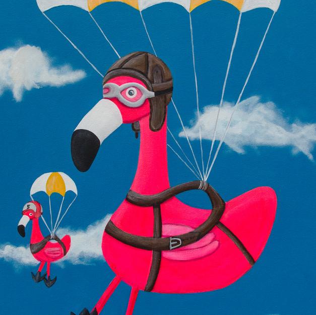 Volker goes skydiving