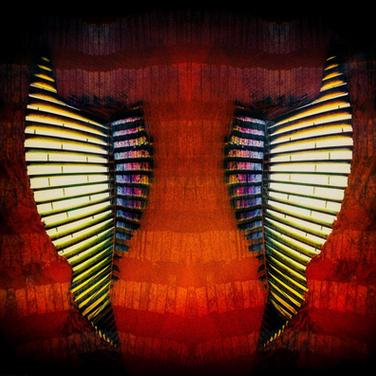Wings of Fury, 2018