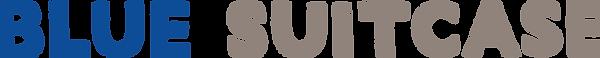 BS logo Blue-Gray line-Transparent.png