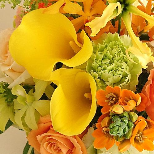 オレンジ&イエロー&グリーン 6500円