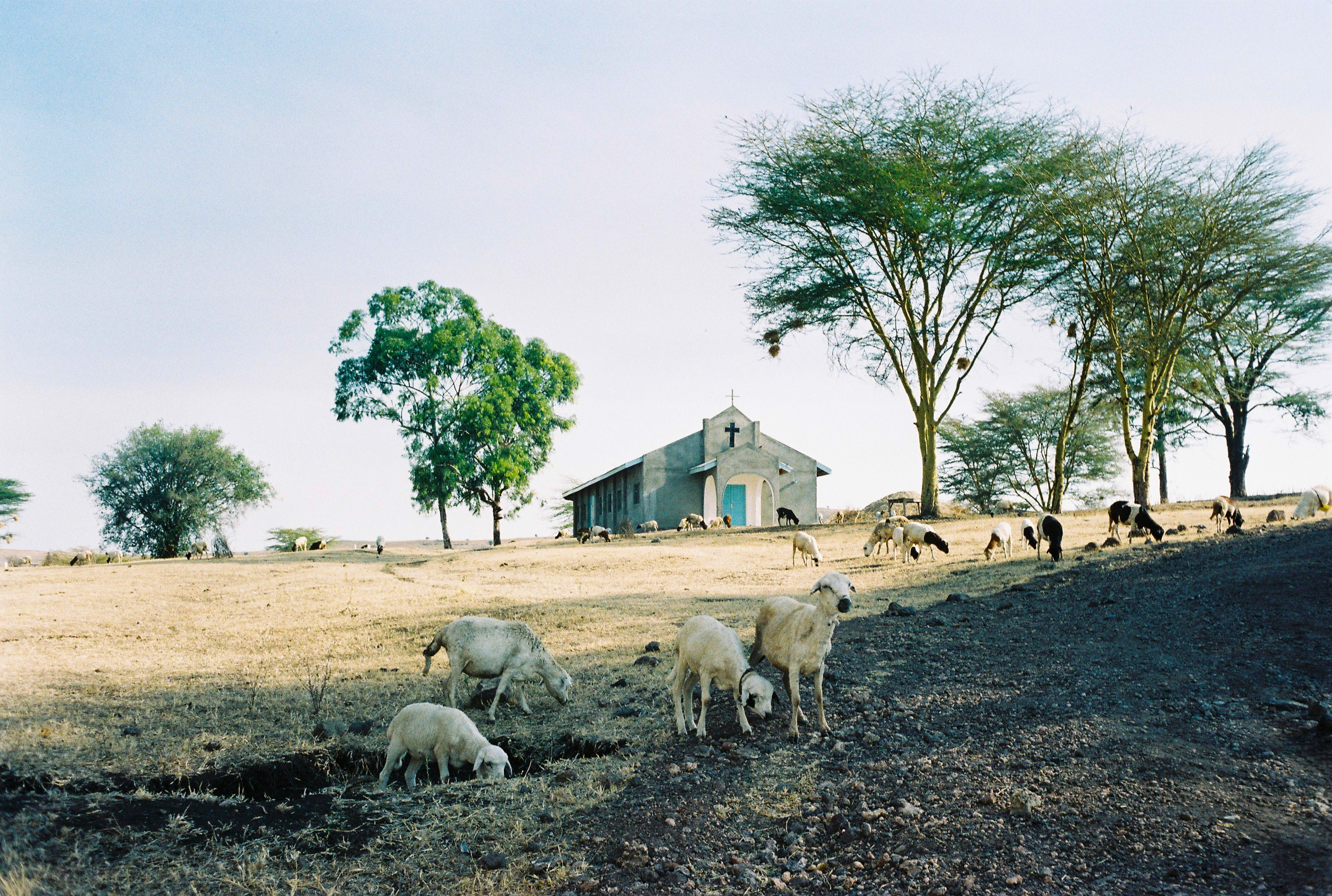 Endulen, Tanzania