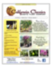 California Classics Newsletter