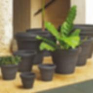crescent plant pots