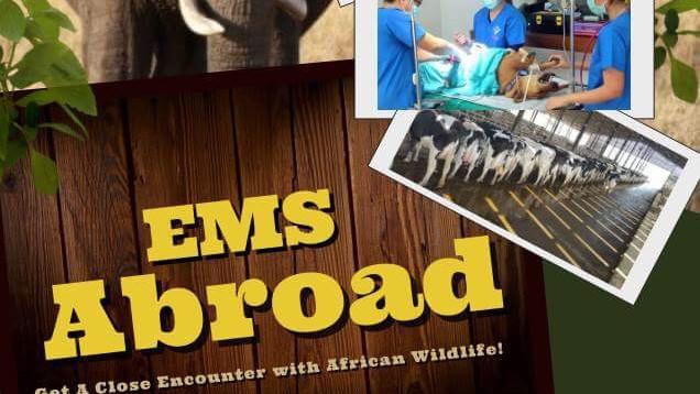 EMS Abroad Talk