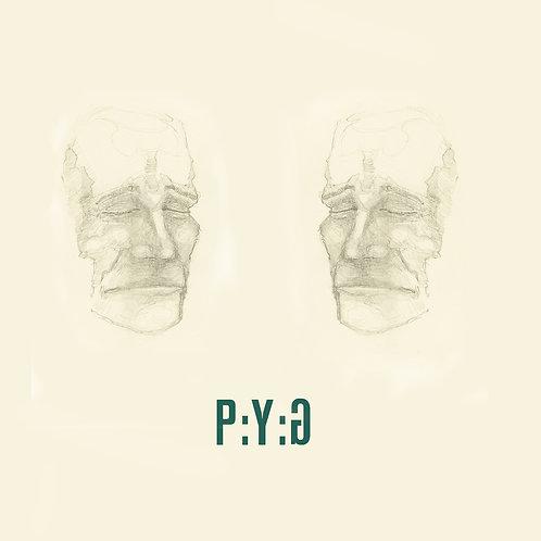 #029 P:Y:G