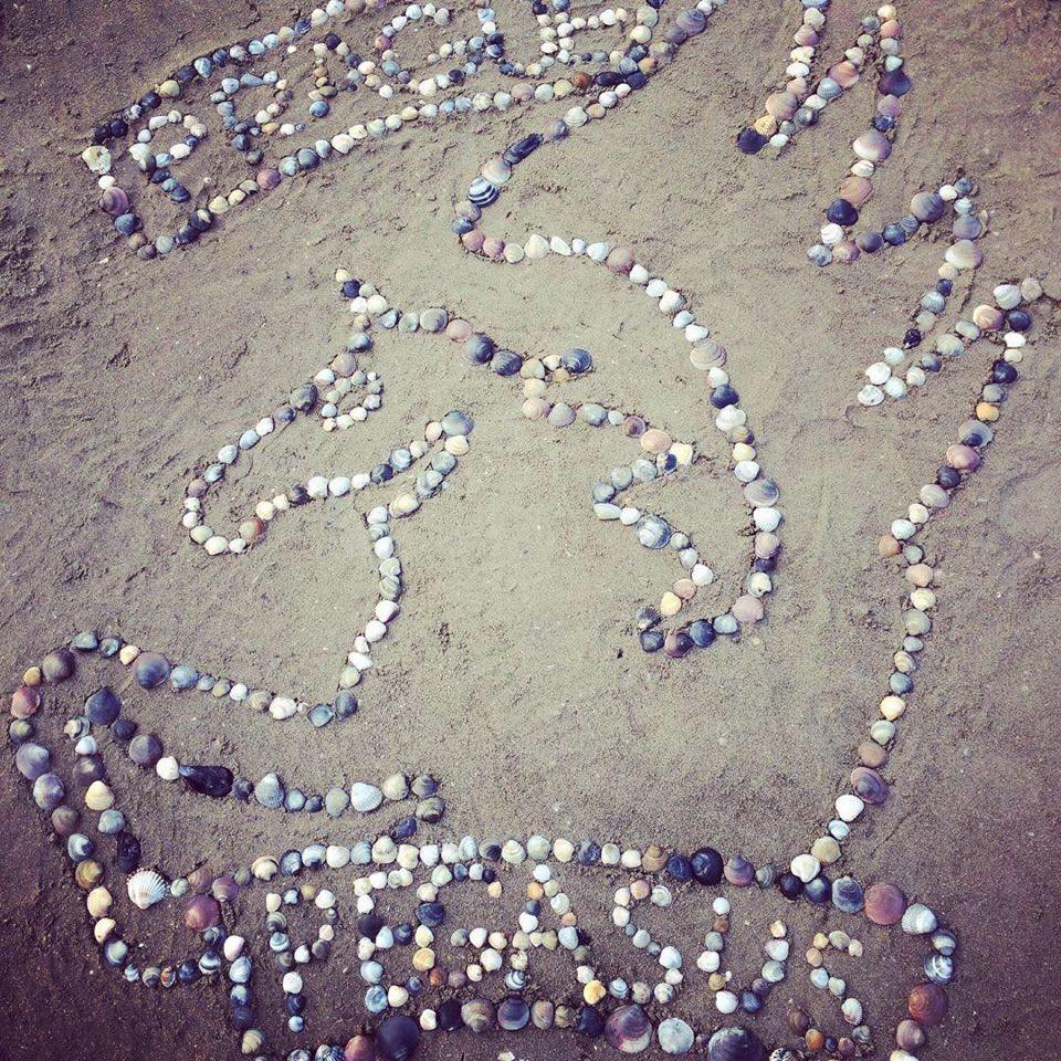 Ο Πήγασος σχεδιασμένος στην άμμο από τα παιδάκια της Anežka Chodounská