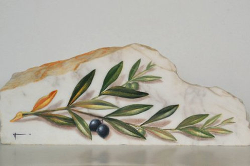 Olive branch on white marble