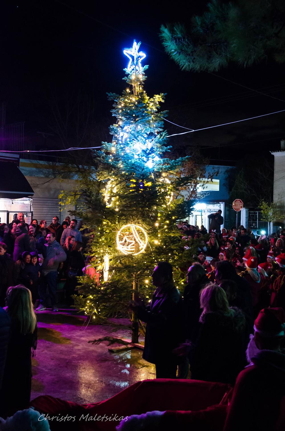 Το Χριστουγεννιάτικο Δέντρο στη πλατεία Μαραθώνα | Φωτογράφος: Χρήστος Μαλέτσικας