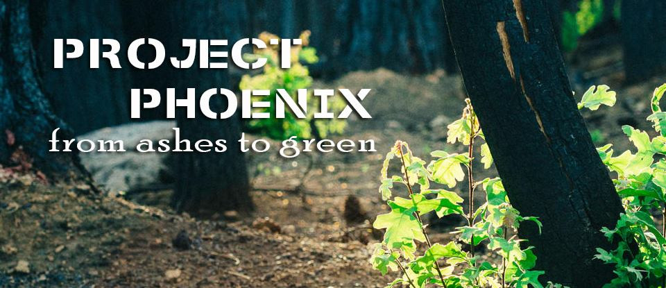 Project Phoenix - προβάλινθος, νέα μάκρη