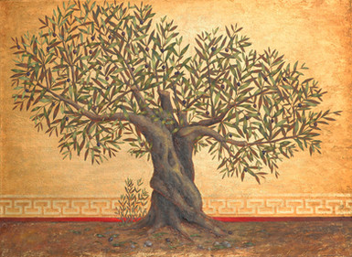 Small Olive Tree ~ SOLD