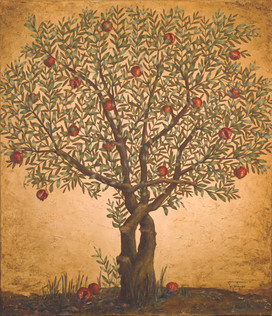 Small Pomegranate Tree ~ SOLD