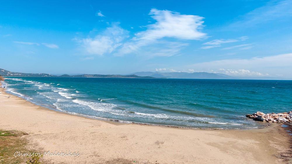Ο φωτογράφος μας Χρήστος Μαλέτσικας, φωτογράφισε τη θέα από την περιοχή της Μπρεξίζας (Άγιος Παντελεήμωνας). Φανταστείτε μπροστά σας να βλέπετε τις ανεμογεννήτριες...
