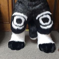 Amo legs