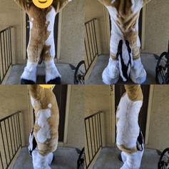 Digi Bodysuit