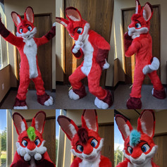 Rabbit Fullsuit