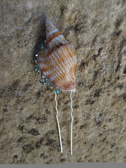 Shell Pin