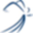 SSIA_Logo_Angel_dark-blue.png