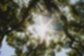 jessica-sysengrath-479313-unsplash_800px