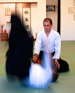 Japanese Martial Art Aikido Ann Arbor Michgan