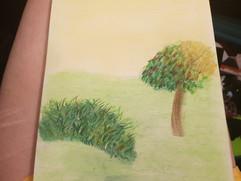 Grass Study - 2019