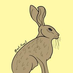 Sitting Hare - 2020