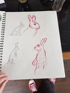 Hare Studies - 2019