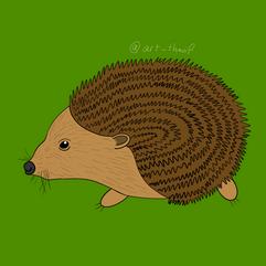 Hedgehog - 2020