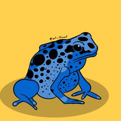 Poison Dart Frog - 2020