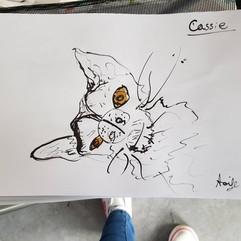Cassie - 2019