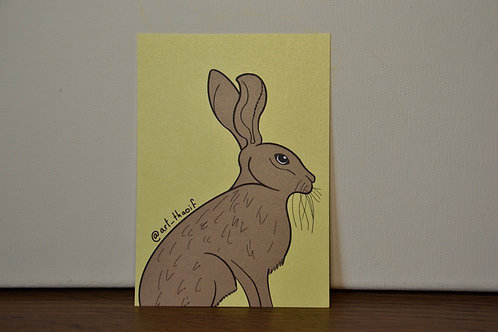 Sitting Hare A6 Print