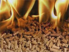 Biomass wood pellet log and chip boilers