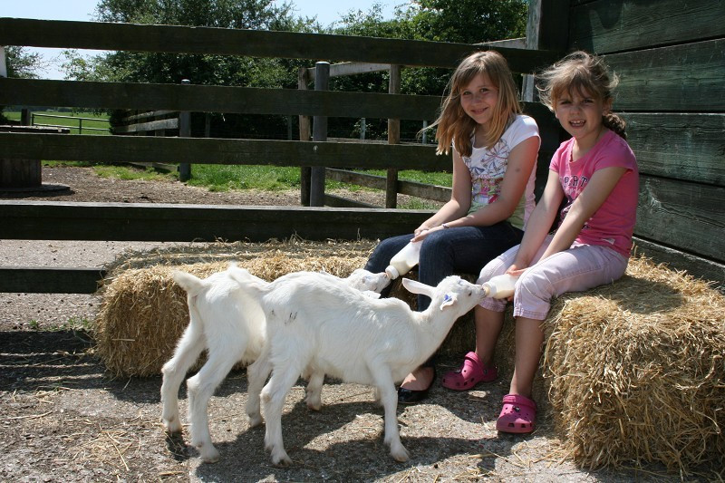 Longdown Dairy Farm