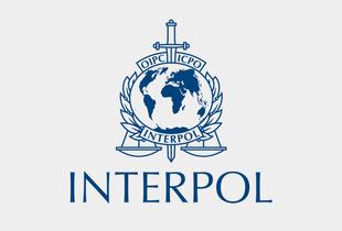 Client logo Interpol.png