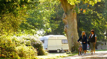 The best camping spots in the New Forest...