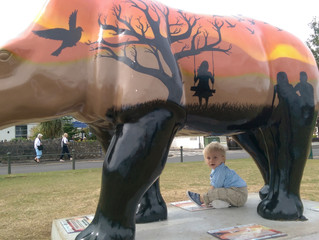 The Great Rhino Project