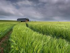 Harvest Storm