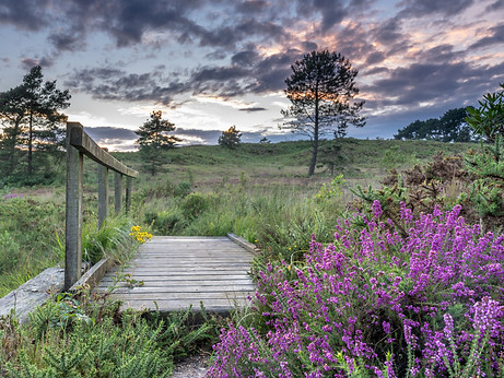 Heathland Bridge