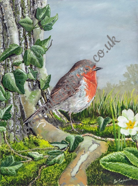 Robin at the base of an Oak tree