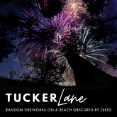 Random Fireworks on a Beach Obscured by Trees