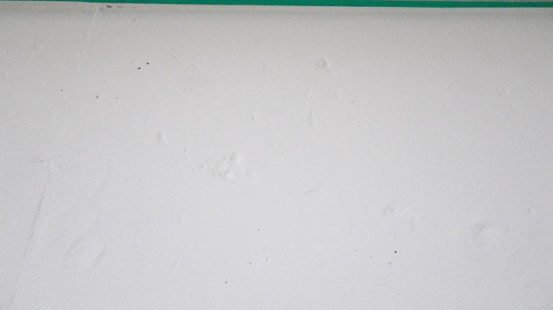 ガイナ 壁塗り