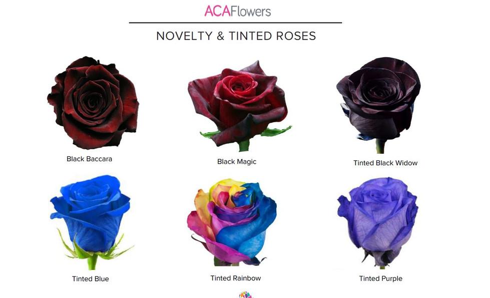 Novelty & Tinted
