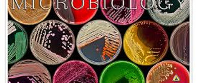 Prometric + PEARSON Vue McQs  in Microbiology for Doctors