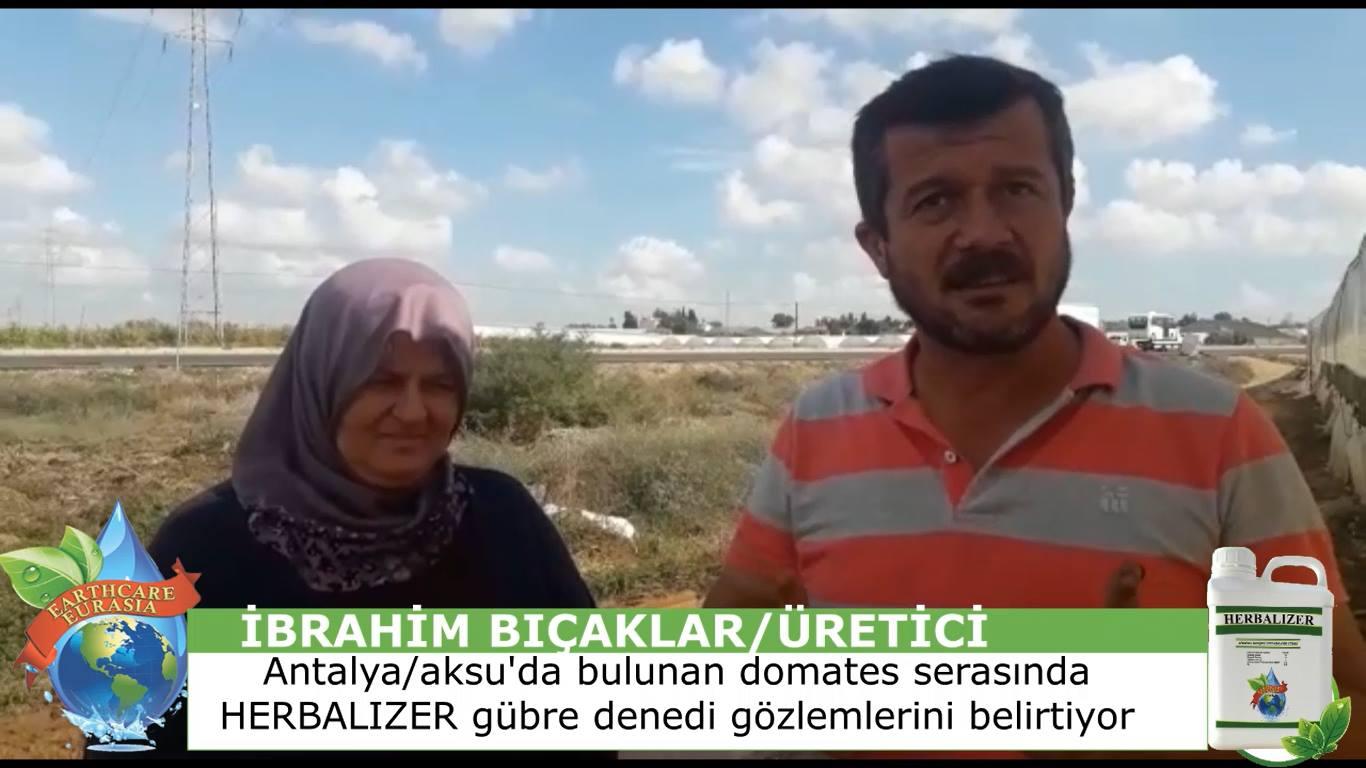 Herbalizer Sıvı Gübre  Domates Serası Aksu/Antalya